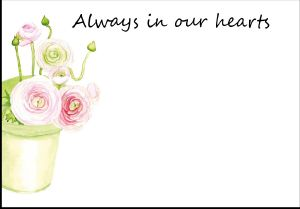 F22 PINK RANUNCULUS ALWAYS IN OUR HEARTS