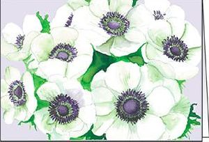 Ref 21c WHITE ANEMONES (No Text)