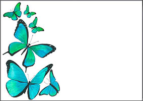Ref F23 AQUA BUTTERFLIES (No Text)
