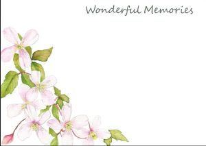 LF19a CLEMATIS (Wonderful Memories)